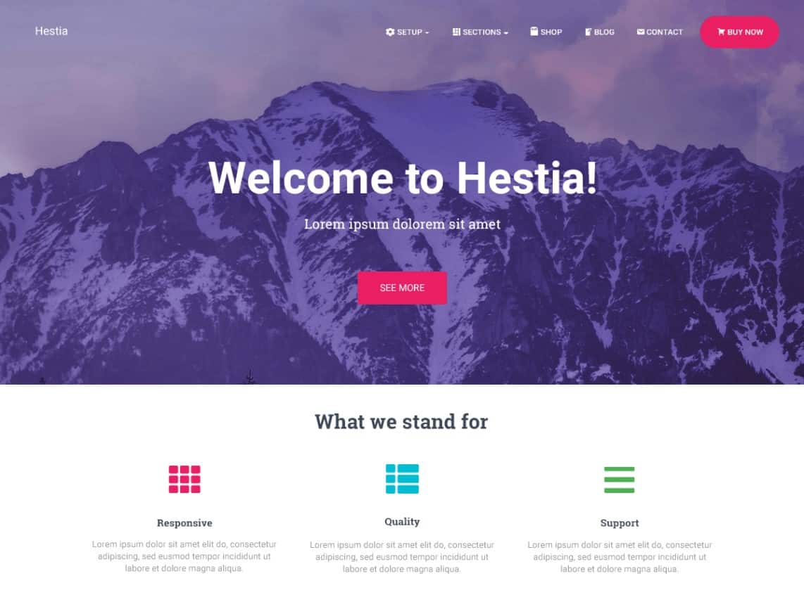 Wordpress Thema Hestia https://www.kylianswebdesign.nl/